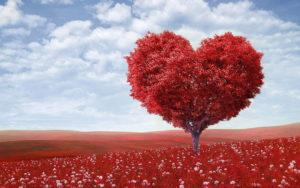 Αρκεί  μόνο  η αγάπη;